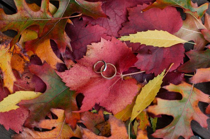 Pretty Flamingo Photography. Ballarat Forest Wedding. Autumn Leaves