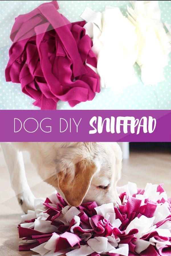 PERRO BRICOLAJE | Sniffpad video tutorial   – DIY für Hunde | Ideen, Anleitungen und Rezepte selbermachen
