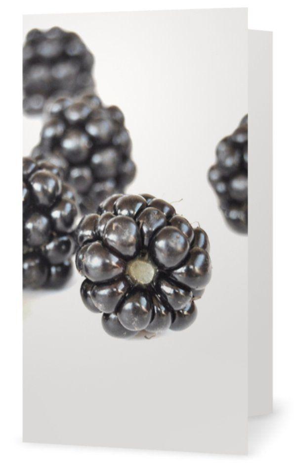 Blackberry, Björnbär. Cards for florists. Gift card for flower arrangements. Scandinavian design. Jäderberg & Co.