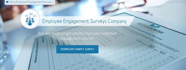 There are two types of questions on the DecisionWise employee - employee survey