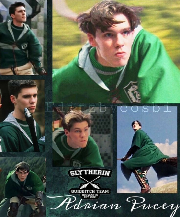 Pin By Elenis Barrios On My Shifting Board Harry Potter Quidditch Harry Potter Pictures Harry Potter Movies