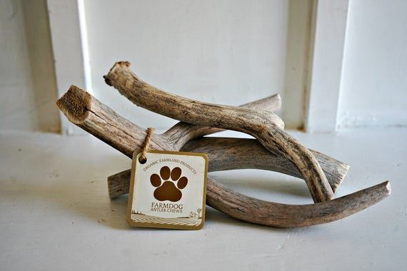 Antler Dog Chews Bundle Of Three Whole Large Antler Chews Farm
