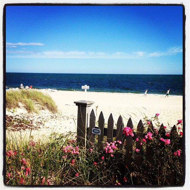 104 Best Cape Cod Fall Activities Images On Pinterest