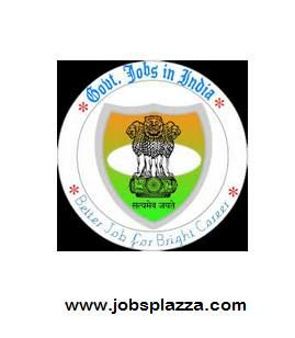 In the Health Care Sector One of the Best Profession is Nursing. In India Nursing is the practice of care for medical patients. The Indian Government is every year opening lot of nursing vacancies in Government Hospitals like AIIMS, JIPMER, ESIC Hospital and Indian Army Hospital and Nursing Crops.  http://jobsplazza.com/latest-govt-nursing-jobs-notification-2014/