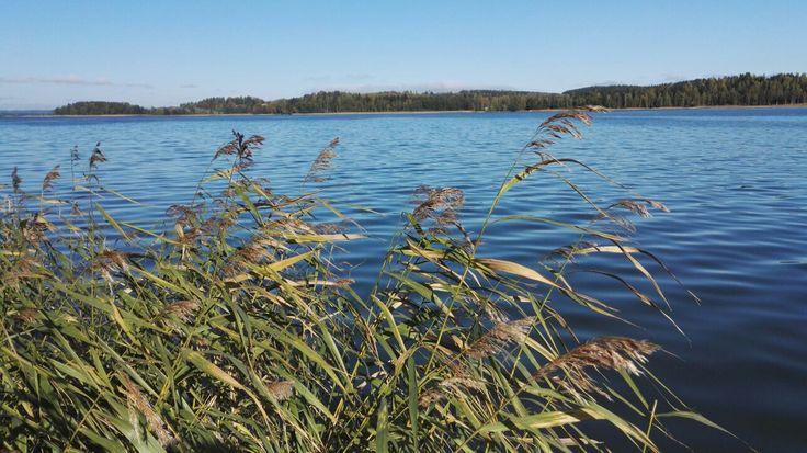 #omaisapu #järveltä #lake #syyskuu #autumn #syksy #tunnelmaa #feeling