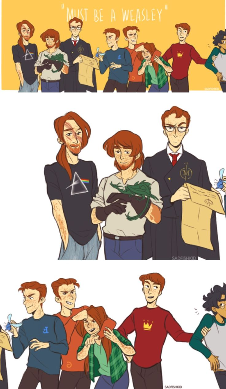 The Weasleys// Harry looks like he trying to escape but Ron has kidnapped him.