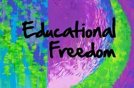 Guidelines, assistance to homeschooling in the UK