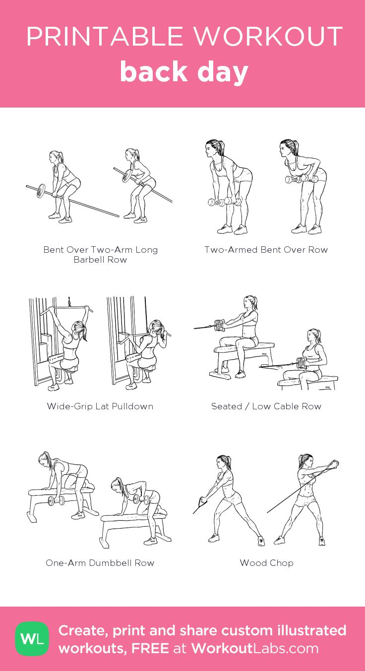 back day: my visual workout created at WorkoutLabs.com • Click through to…