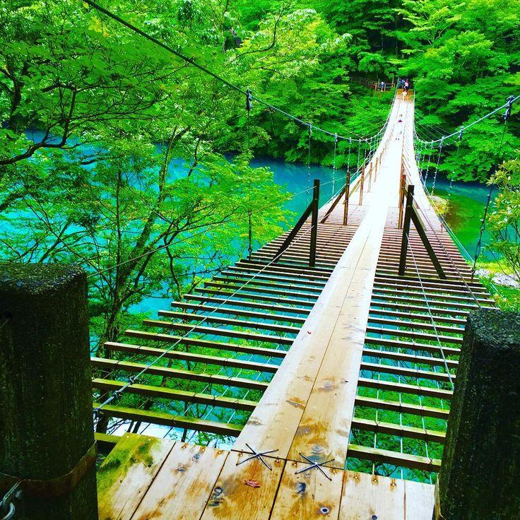 ターコイズブルーが美しい?「寸又峡」の夢の吊り橋で恋愛成就 ... Media?size=l