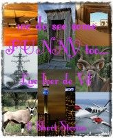 We Do See Some Funny Too..., an ebook by Luc Iver de Vil at Smashwords