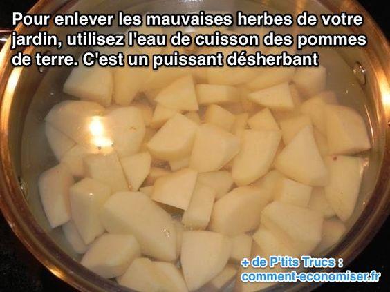 Saviez-vous que l'eau de cuisson des pommes de terre était un puissant désherbant ? Réutilisez l'eau de cuisson des pommes de terre pour enlever les mauvaises herbes ! :-)  Découvrez l'astuce ici : http://www.comment-economiser.fr/comment-desherber-son-jardin-naturellement.html?utm_content=bufferc1492&utm_medium=social&utm_source=pinterest.com&utm_campaign=buffer