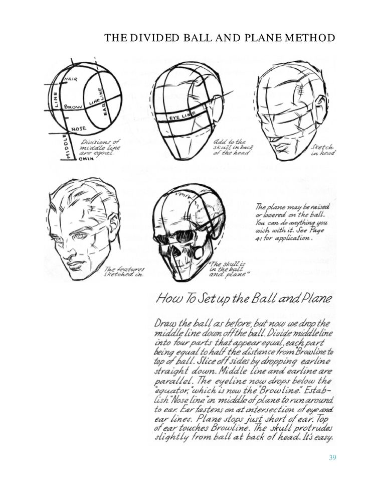 Drawing the Head & Hands : Loomis, Andrew - Internet Archive