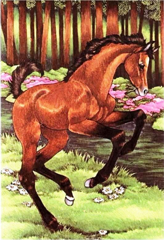 25 best My favorite children's book illustrator (robin james ...