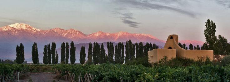 Cavas Wine Lodge – Argentina. Located in a 50-acre vineyard in an Andean Valley in Mendoza Province, the 900-winery heart of Argentine viticulture.