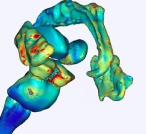 Best Biomedical Engineering Images On   Engineers