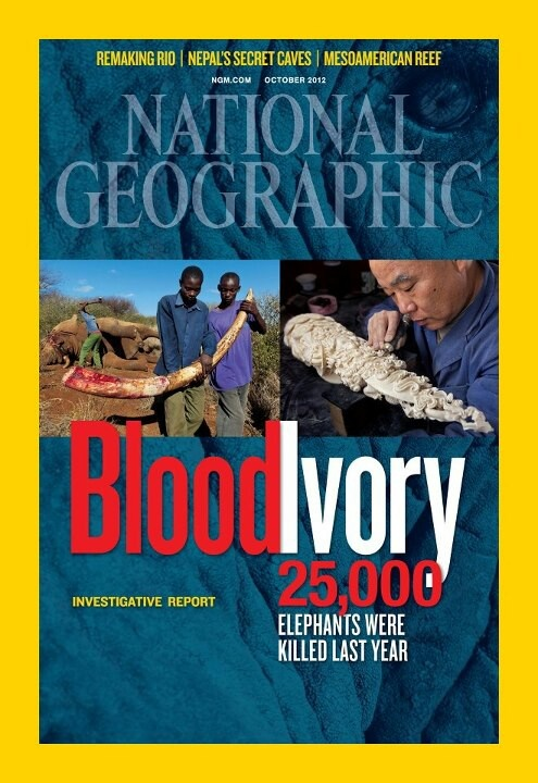 Ivory trade... The National Geographic site has some excellent articles on the tragic ivory trade..  Unfortunately I can't pin from their site... because they're worthy of pinning them All.