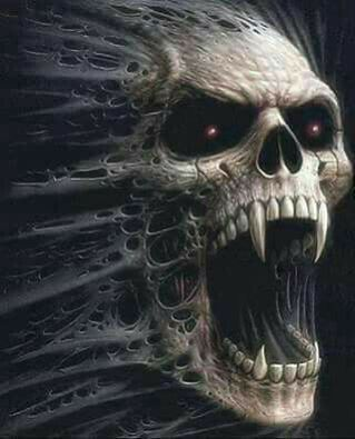 My favorite skull pic.
