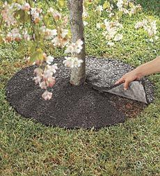 American-Made Perma Mulch Recycled Rubber Tree Ring