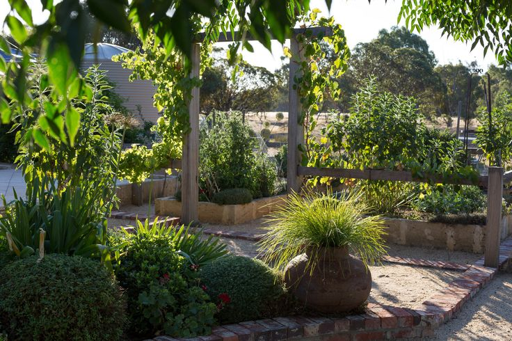 https://flic.kr/p/ksiTWN | Veggie Garden Summer | View towards Vegetable Garden.  This summer it's experienced all types of vermin; strawberry-scoffing lizards, tomato-trashing bingeing blackbirds and apple-munching ravenous rosellas.... have picked a few herbs however.