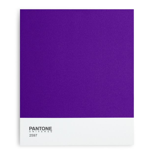 Pantone Purple 2597 Canvas Classic Can T Live Without