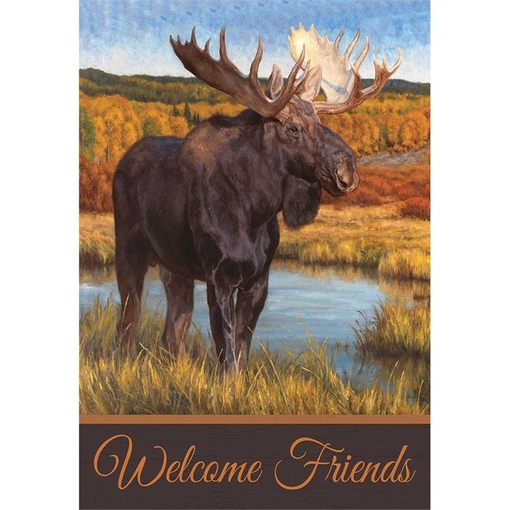 The Moose Flag is printed, standard size, and looks great hanging off a cabin porch.
