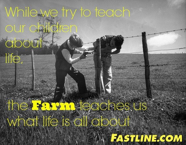 growing up on a farm is the best!