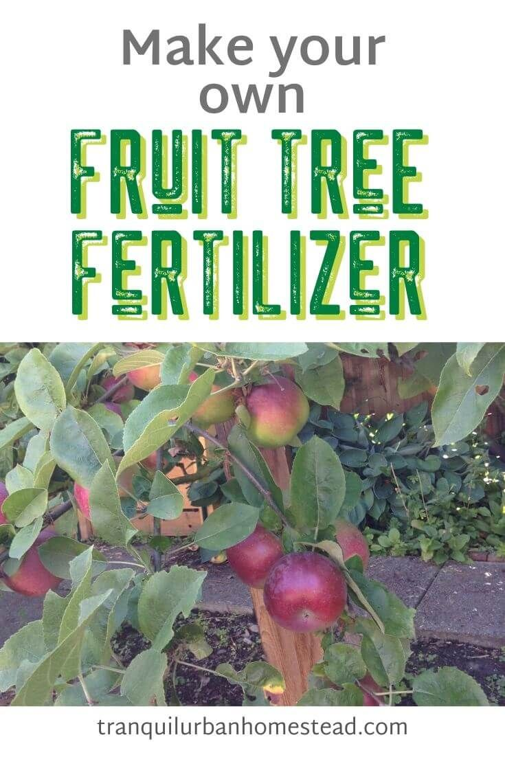 Fruit Tree Fertilizer How To Make And