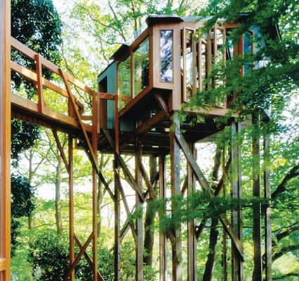 One day I will rent one of these amazing tree houses for a week. It will be the best week of my life.