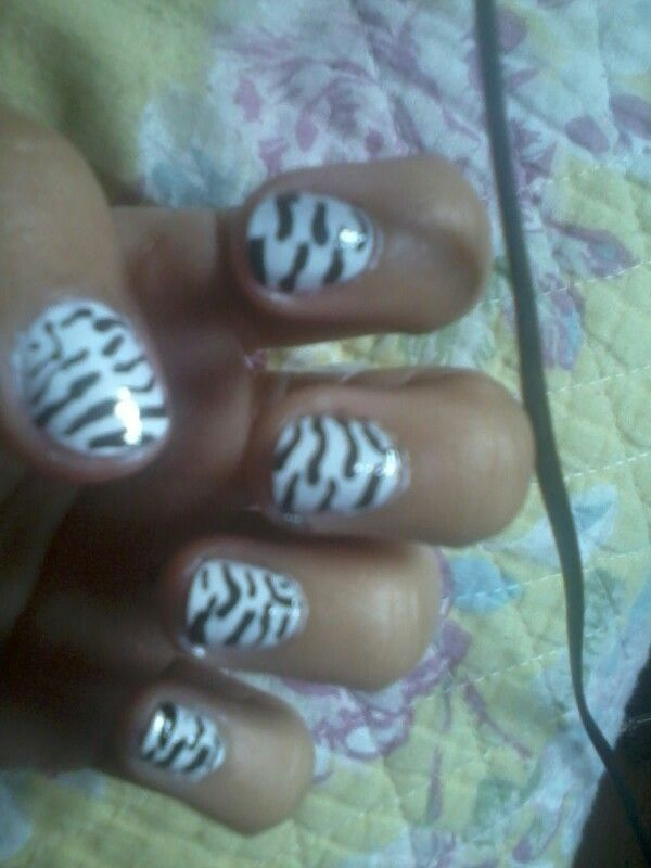 Cebras animal print