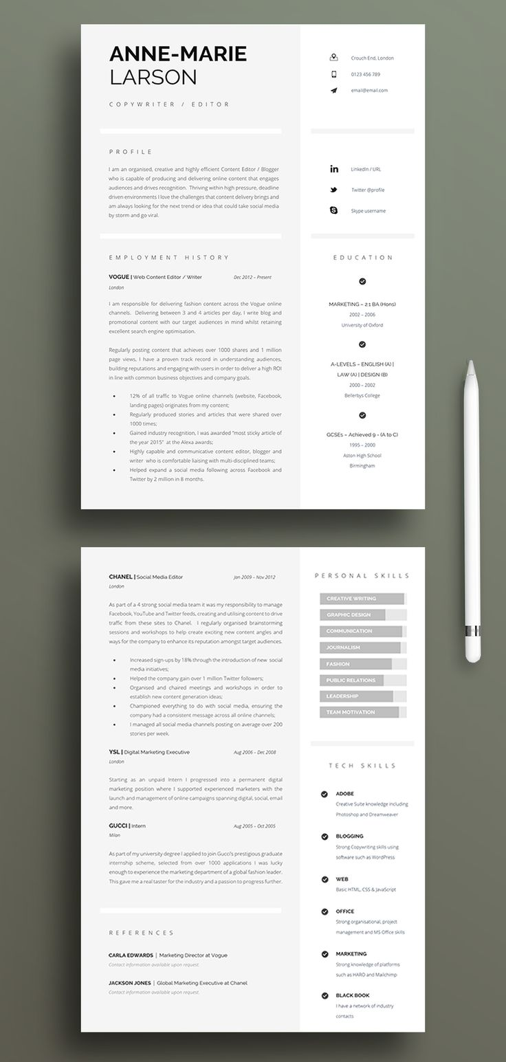 Job Search Upgrade in 2021 Executive resume template