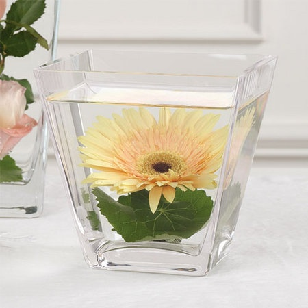 Flowers, Reception, Centerpiece, Submerged, Vase glass, Color pink, Flower gerbera, Vendor party town, Color yellow, Vase square