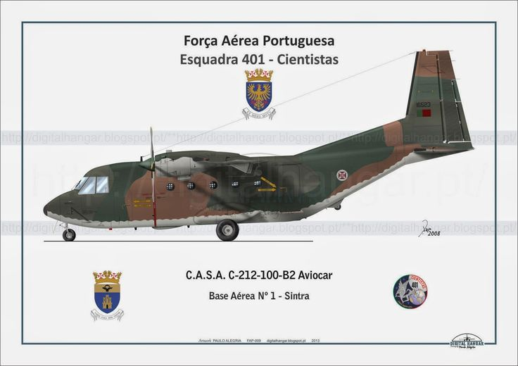 "CASA C212 Aviocar, Esq 401 ""Cientistas"""