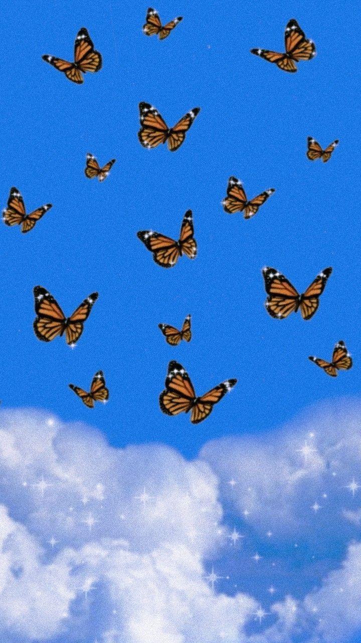 Aestetisk Butterfly Wallpaper Bla Nicheh Butterfly Wallpaper Iphone Iphone Background Wallpaper Butterfly Wallpaper