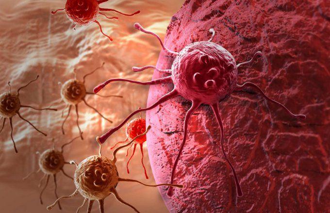Новейшие медицинские исследования показали, что эти 7 продуктов, которые мы представляем сегодня, являются чрезвычайно полезными в случае заболевания раком, так как они подавляют рост раковых клеток! Исследования показали, что эти продукты еще более мощные, чем химиотерапия. Самое приятное, что среди этих продуктов есть и наши любимые! К ним относятся: Куркума, зеленый чай, черный шоколад, малина, черника, помидоры, и красное вино. …