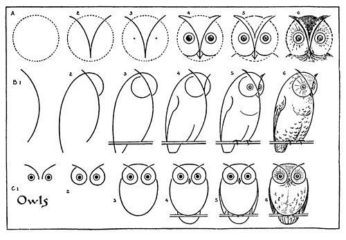 How to draw an owl -for Michelle James
