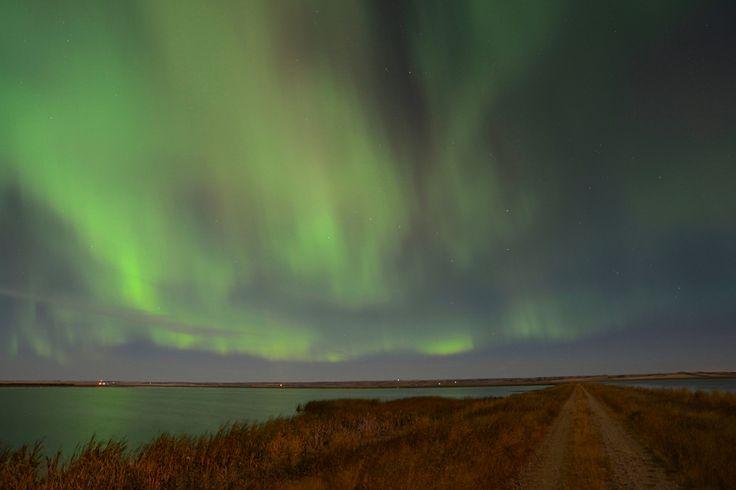Northern lights at Luck Lake Heritage Marsh, Saskatchewan