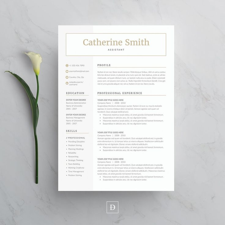 free printable cover letters for resumes%0A Word Resume  u     Cover Letter Template  Resumes