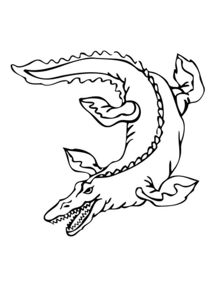 Dinosaur Coloring Pages With Names Dinosaur Coloring Pages With Names In 2020 Dinosaur Coloring Pages Name Coloring Pages Dinosaur Coloring