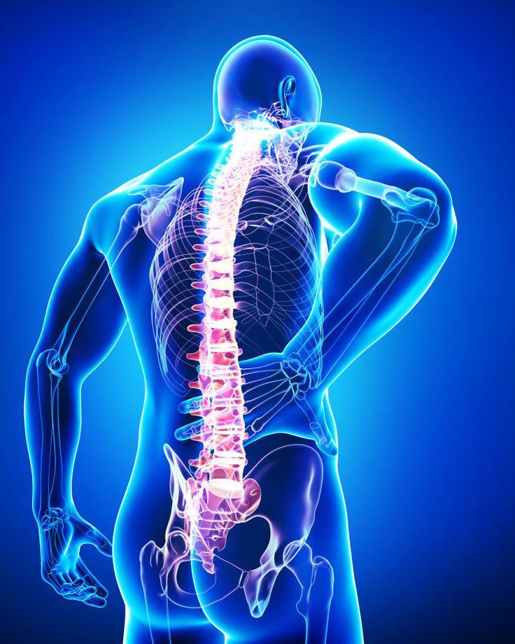 1. Дегенеративные изменения (например артритические) в тазобедренном суставемогут вызывать боль в области бедра, которая распространяется в пах, в область крестцово-подвздошного сустава и поясницу.  …