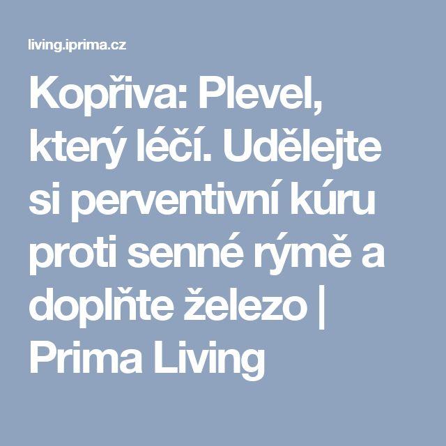 Kopřiva: Plevel, který léčí. Udělejte si perventivní kúru proti senné rýmě a doplňte železo | Prima Living