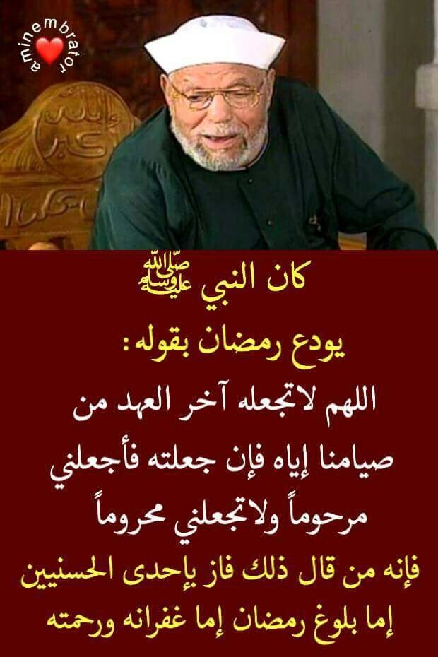 Pin By Abdelouahed Gualil On الشعراوي Quran Quotes Inspirational Islamic Inspirational Quotes Islamic Phrases