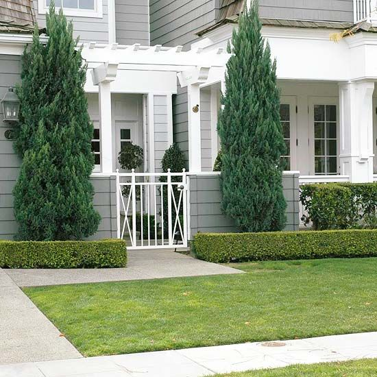 Great landscape design begins at the foundation of your home with vertical accents. Play up columns, corners of your porch, or your front entry with plant materials such as ornamental grasses or vertical evergreens./