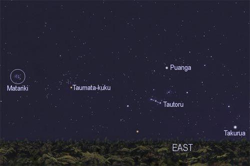 "Winter stars   ""This chart shows the winter stars that were important to Māori. The pre-dawn rising of Matariki (the Pleiades) and Puanga (Rigel) signified the start of the Māori year, in winter. Takurua (Sirius) literally means winter.""    Manuka Henare. 'Te mahi kai – food production economics', Te Ara - the Encyclopedia of New Zealand, updated 1-Mar-09  URL: http://www.TeAra.govt.nz/en/te-mahi-kai-food-production-economics/4/1"