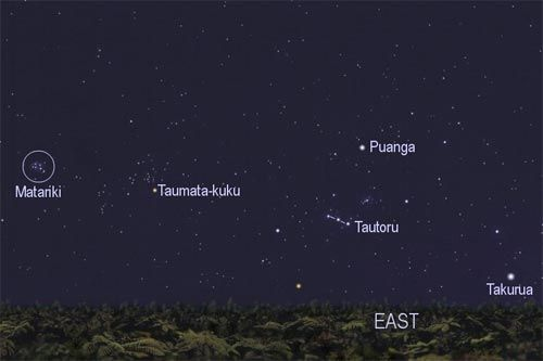 "Winter stars   ""This chart shows the winter stars that were important to Māori. The pre-dawn rising of Matariki (the Pleiades) and Puanga (Rigel) signified the start of the Māori year, in winter. Takurua (Sirius) literally means winter.""    Manuka Henare. 'Te mahi kai – food production economics', Te Ara - the Encyclopedia of New Zealand, updated 1-Mar-09  URL: http://www.TeAra.govt.nz/en/te-mahi-kai-food-production-economics/4/1"
