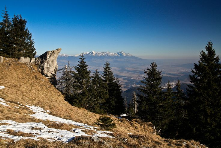 Prelom rokov 2015 a 2016 je skúpy na sneh na celom Slovensku. Vianočné blato sa po sviatkoch mení na zem premrznutú na kosť, prichádza tlaková výš, čo je ideálny čas na dobrú turistiku. Hneď druhý januárový deň sa vyberáme na Poludnicu v Nízkych Tatrách. Hlavným dôvodom pre výber lokality sú parádne výhľady na Tatry a Liptov, vhodná predpoveď počasia a, samozrejme, kešky.