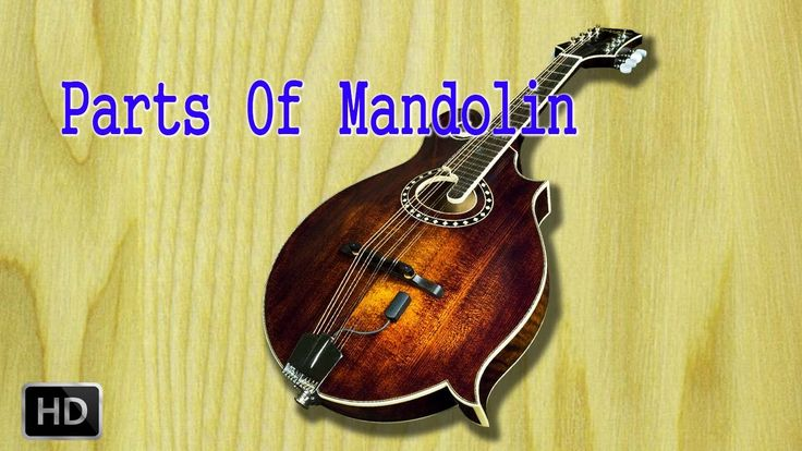 69 Best Learn to Play Mandolin images in 2019 | Mandolin ...