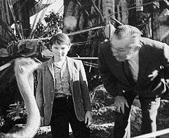 Walt at the opening of the Swiss Family Robinson tree house