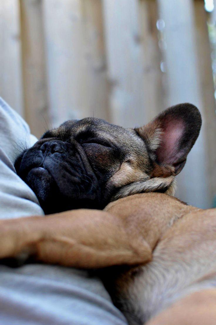 so cutee! sleepy