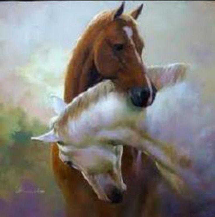 Картинки по запросу любовь лошадей