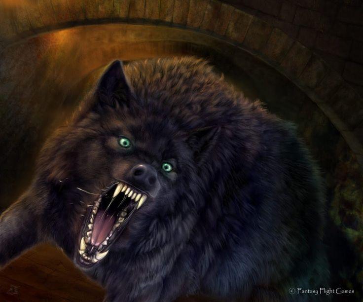 Черные волки. Волк одиночка. Альфа самец. Лучший охотник! Суперхищники! ...